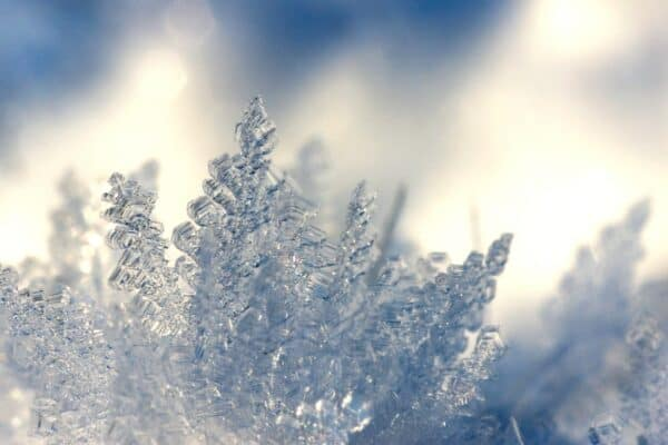 Eiskristalle fotografieren: Frostig-schöne Nahaufnahmen.