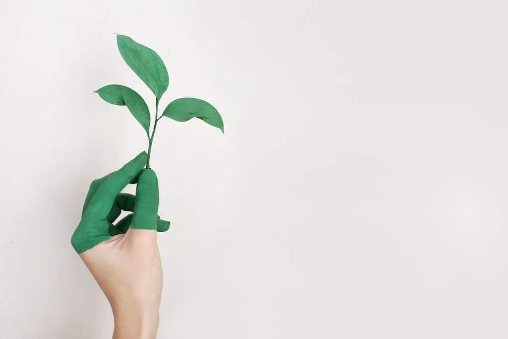 Nachhaltigkeit bei Panasonic