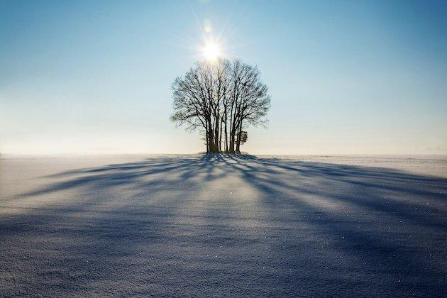 Fotografieren mit Licht und Schatten